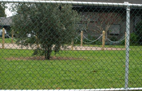 cerca de casa em tela alambrado revestido em pvc
